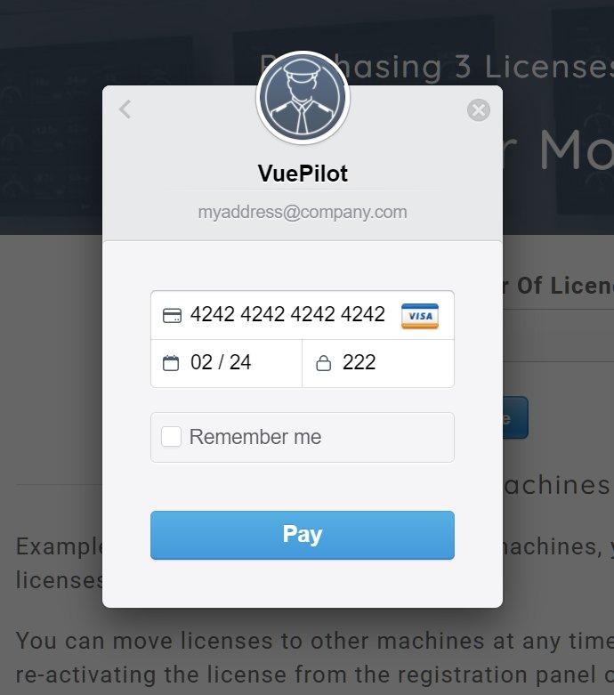 Payment Card Input